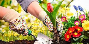 """Life's a garden...dig it!"""